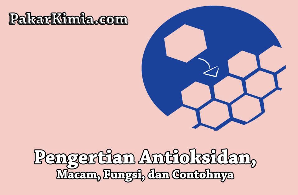 Pengertian Antioksidan