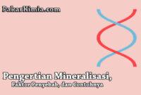 Mineralisasi Adalah